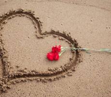 Valentine's & Other Gift Ideas