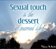 Marriage Meme #9 — Sexual Touch
